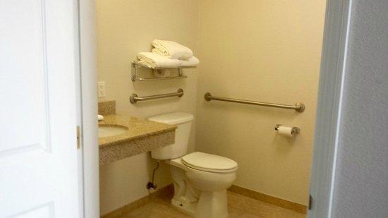 La Quinta Inn & Suites Rapid City : Part of bathroom with safety rails.