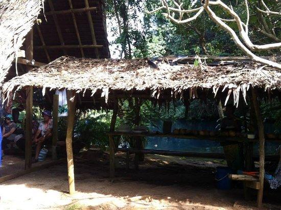 Nanda Blue Hole: free coconuts and cake