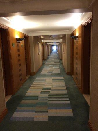 Hilton Dubai The Walk: The spacious corridor outside the room