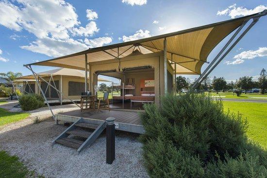 BIG4 Adelaide Shores Caravan Park: Eco Tent
