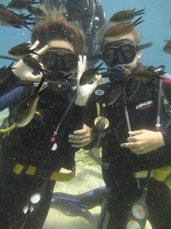 Naxos By, Grækenland: Discover Scuba Diving