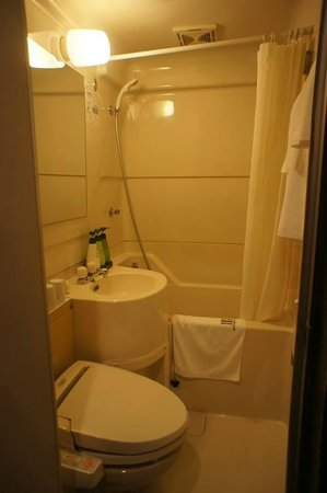 Dotonbori Hotel : The compact bathroom