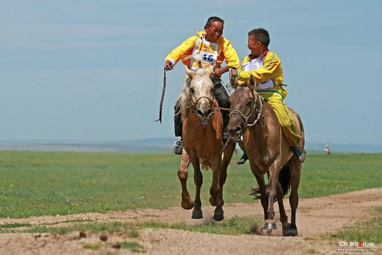 Ayan Travel - Adventure tour company offering packages to Mongolia. www.toursmongolia.com