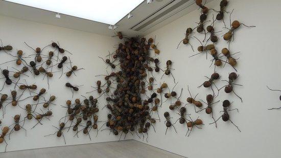 Saatchi Gallery - Exposição