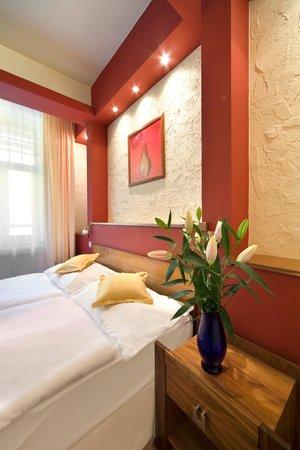 Saint Moritz Spa & Wellness Hotel: Double room Standard
