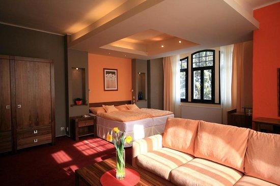 Saint Moritz Spa & Wellness Hotel: Double room de Luxe