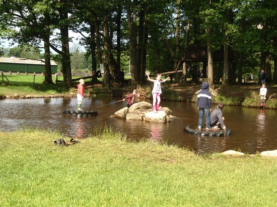 Fisherground Campsite: Fisherground pond