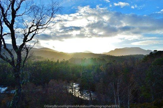 Invergordon Tours: Glen Affric Sunrise (Gary Bruce)