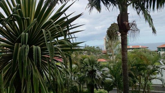 Enotel Quinta do Sol: Uitzicht vanuit de hotelkamer richting de zee.
