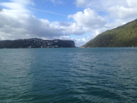 Featherbed Nature Reserve: Knysna heads from the boat .
