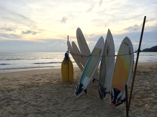 Surf boards for rental on Karon Beach