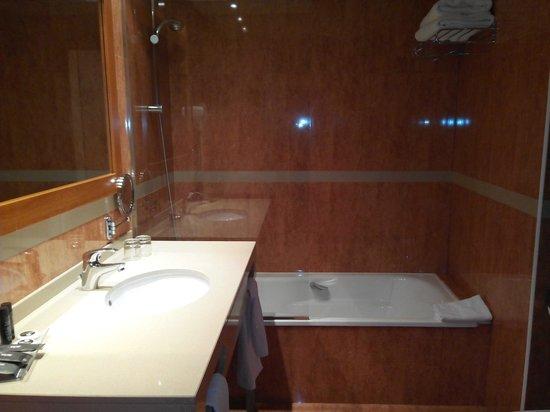 Hotel Acta Arthotel : baño