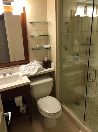 Tampa Airport Marriott : Bathroom