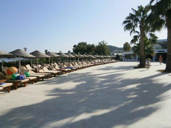 Club Blue Dreams: miejsce wypoczynku nad jednym z 5 basenów