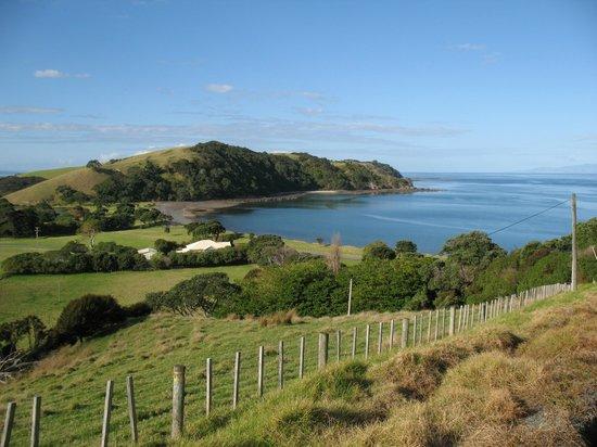 NZWINEPRO - Auckland Wine Tours : Tawharanui Regioanl Park