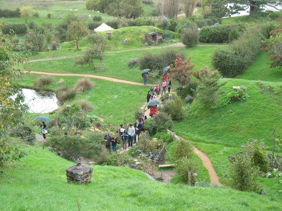 NZWINEPRO - Auckland Wine Tours : Hobbiton Private Charter
