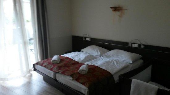 CE Plaza Hotel: Room