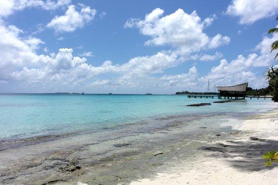 Kuramathi Island Resort : Aussicht