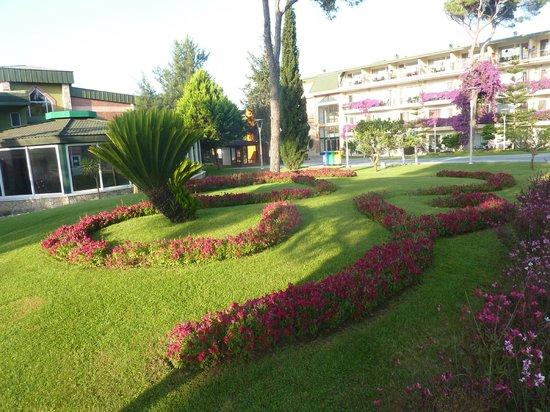 Maritim Pine Beach Resort: Garden