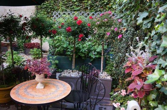 Chelsea Pines Inn: Garden
