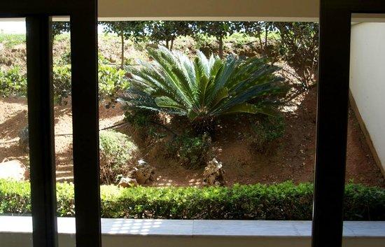 "Santa Marina Plaza: ""Garden View"""