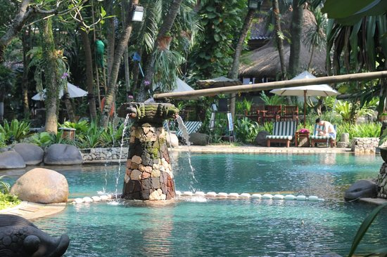 Hotel Aryaduta Lippo Village: The lagoon