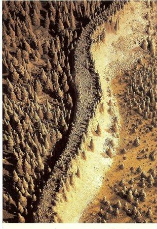 La Grotte de Trabuc : La Muraille de Chine - Les 100.000 Soldats - Grotte de Trabuc - 30140 MIALET - Gard