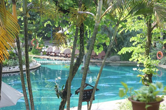 Aryaduta Lippo Village : Gorgeous pool