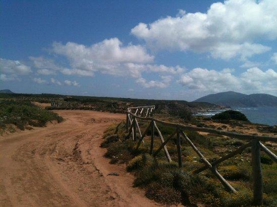 Villaggio e Campeggio Nurral: I sentieri MTB nella zona