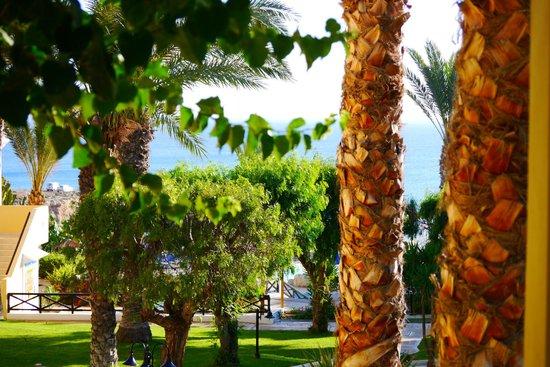 Malama Beach Holiday Village: View from balcony