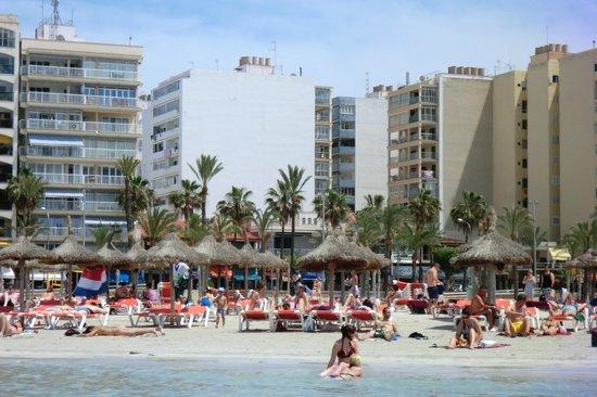 Pinero Hotel Bahia De Palma: Arenal