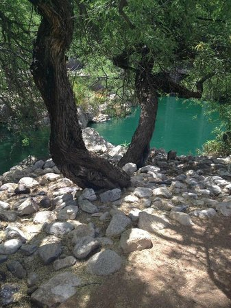 Loews Ventana Canyon Resort: Part of the nature walk