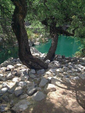 Loews Ventana Canyon Resort: Part of the nature walk