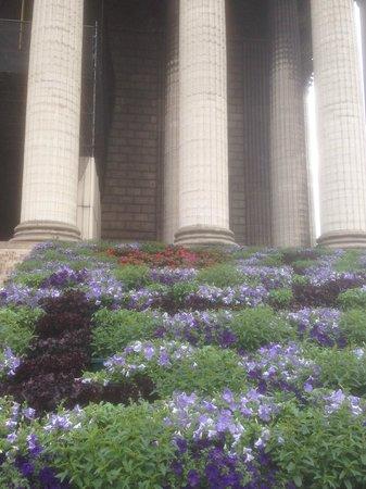 La Madeleine: fiori 4 giugno 2014