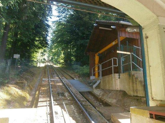 Merkur Mountain: train going up