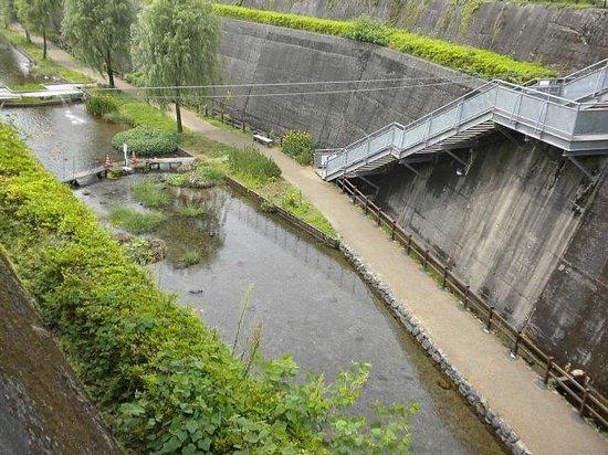 Takamori Yusui Tunnel Park : トンネル上から
