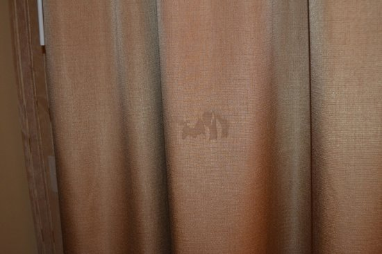 Twin Arrows Navajo Casino Resort: Stain on curtain.