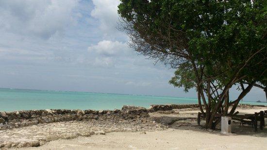 Diamonds Mapenzi Beach : Beach