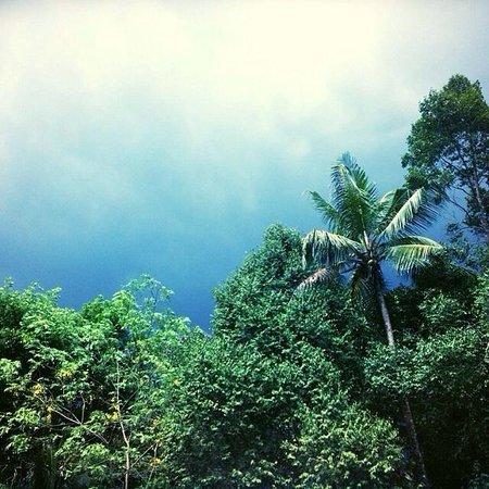 Yogalife Homestay: Storm at the homestay