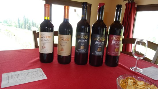 Veneto Italy and Wine: wines awaiting tasting 1