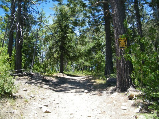 Mt. Lemmon Scenic Byway: views along the drive
