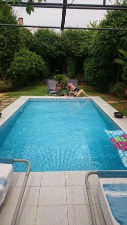 Riad Dar Khmissa Marrakech: Mon ispice di counasse, à la piscine! De la verdure, de la fraîcheur, on a aimé!!