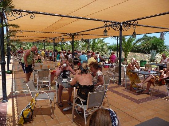 Concorde Hotel Marco Polo : Terrasse méditérannée