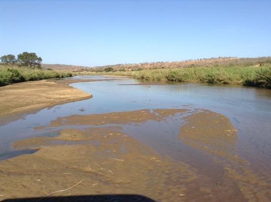 Tim Brown Tours - Durban Safari Tours: local watering hole