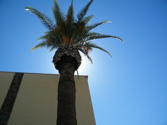 La Quinta Inn & Suites Tucson - Reid Park : pool area