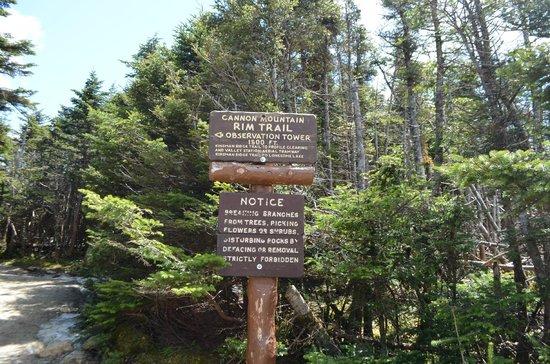 Cannon Mountain Aerial Tramway : Ridge Trail