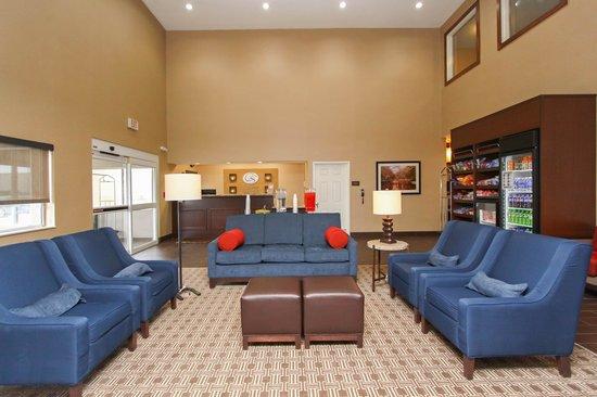 Comfort Suites University: Lobby