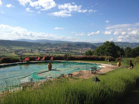 Il Cantico della Natura : piscina con vista