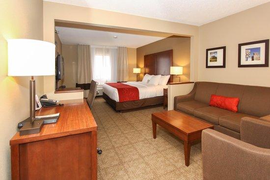 Comfort Suites University: King Room