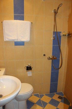 Nevsky Hotel Grand : Крошечный санузел и печальный душ